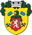 Coat of arms of city